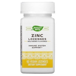 Nature's Way, zinc أقراص استحلاب الزنك، بنكهة التوت البري، 60 قرص استحلاب نباتي