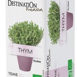 Destination premium, infusion Thym