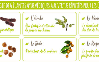 Utiliser le shampoing végétal BIO aux 6 plantes ayurvediques